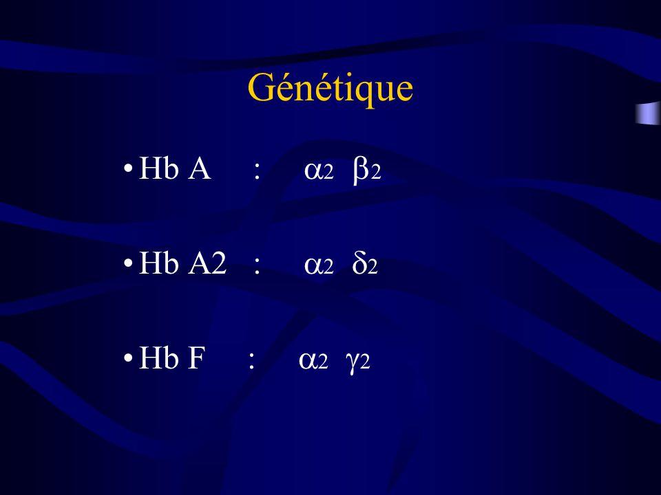 Génétique Hb A : 2 2 Hb A2 : 2 2 Hb F : 2 2