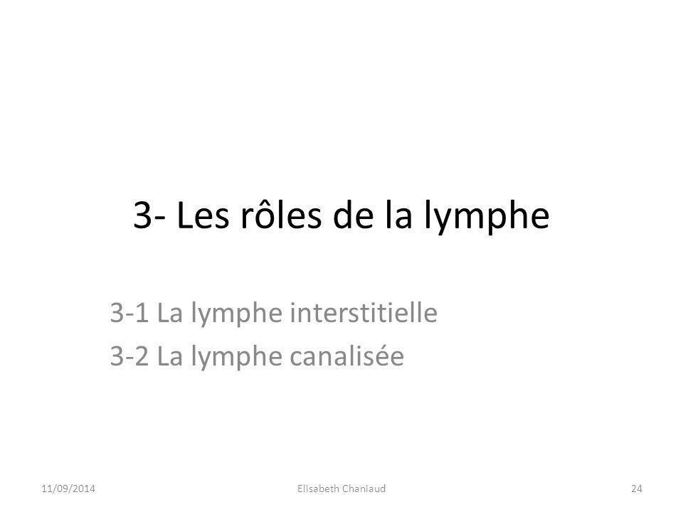3-1 La lymphe interstitielle 3-2 La lymphe canalisée