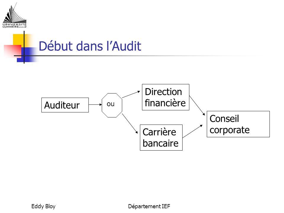 Début dans l'Audit Direction financière Auditeur Conseil corporate