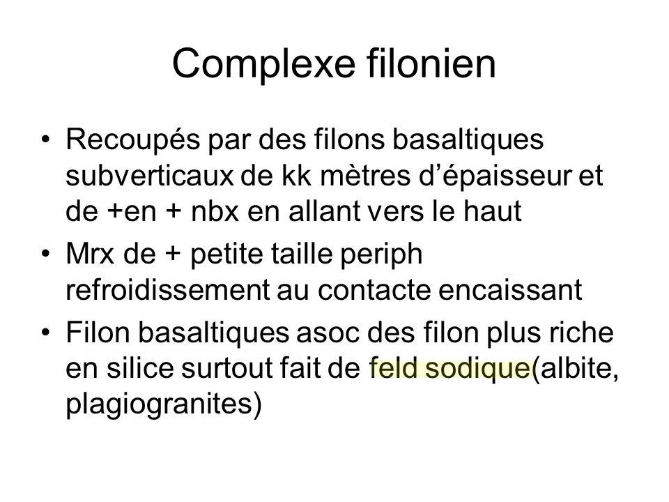 Complexe filonien Recoupés par des filons basaltiques subverticaux de kk mètres d'épaisseur et de +en + nbx en allant vers le haut.