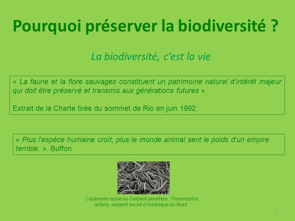 La biodiversité, c'est la vie
