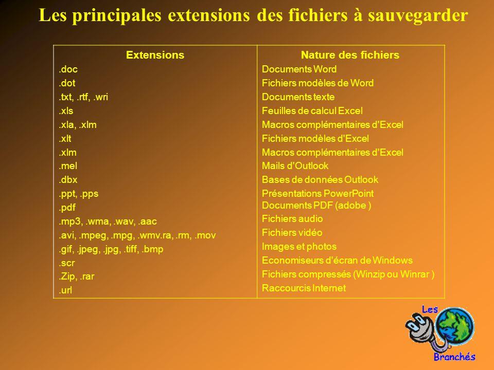 Les principales extensions des fichiers à sauvegarder