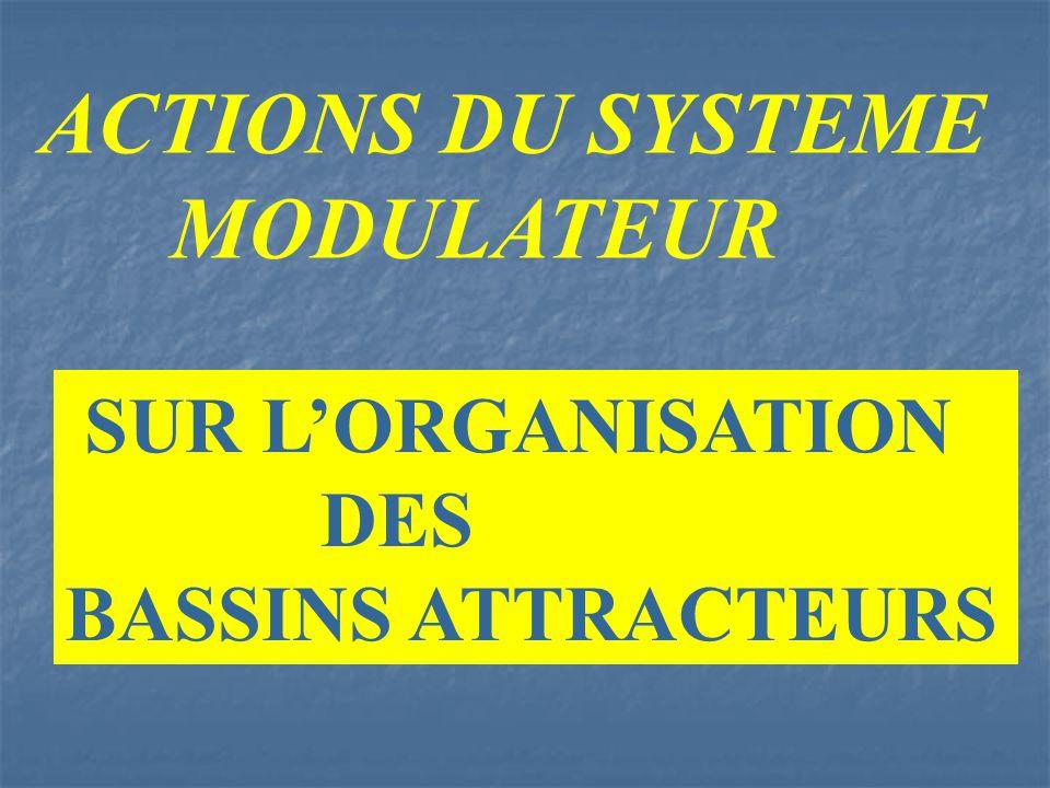 ACTIONS DU SYSTEME MODULATEUR SUR L'ORGANISATION DES