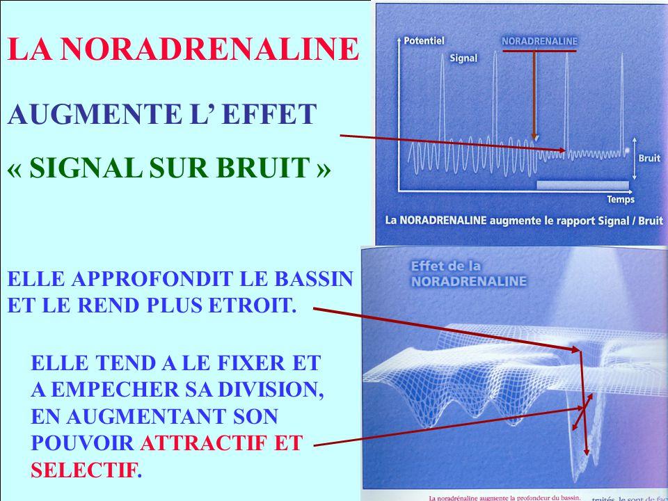 LA NORADRENALINE AUGMENTE L' EFFET « SIGNAL SUR BRUIT »