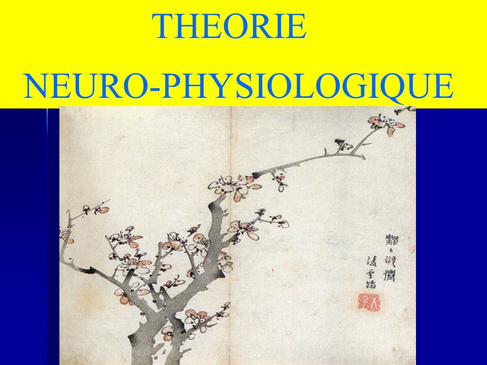 THEORIE NEURO-PHYSIOLOGIQUE