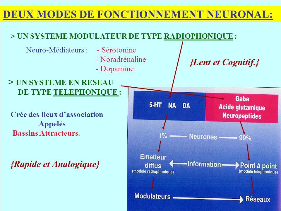 DEUX MODES DE FONCTIONNEMENT NEURONAL: