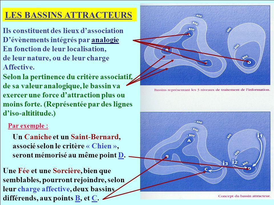 LES BASSINS ATTRACTEURS