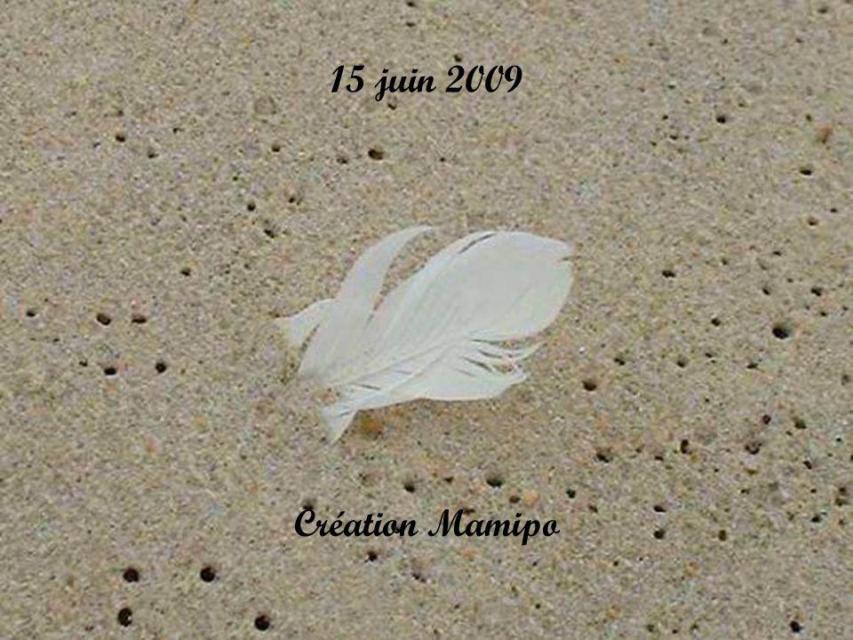15 juin 2009 Création Mamipo