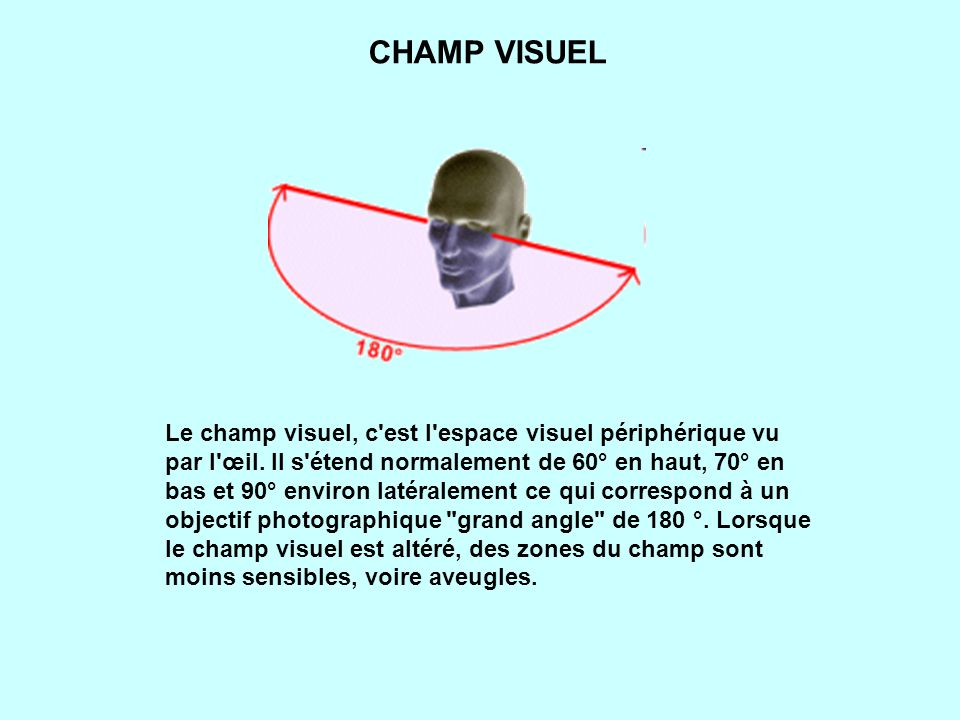 CHAMP VISUEL