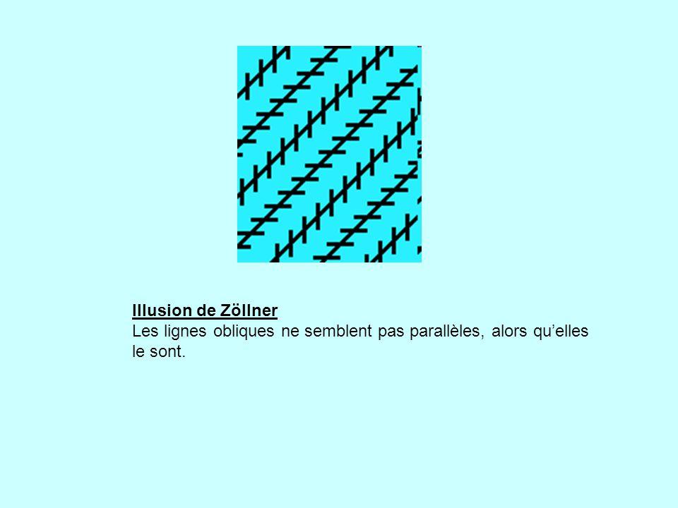 Illusion de Zöllner Les lignes obliques ne semblent pas parallèles, alors qu'elles le sont.
