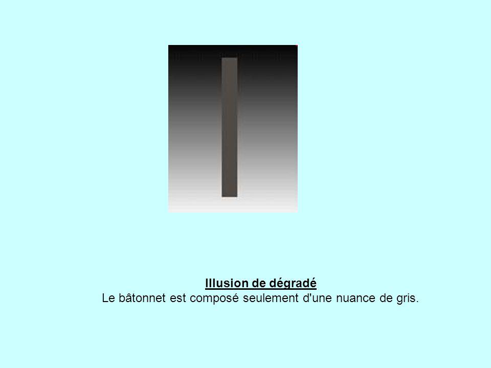 Illusion de dégradé Le bâtonnet est composé seulement d une nuance de gris.