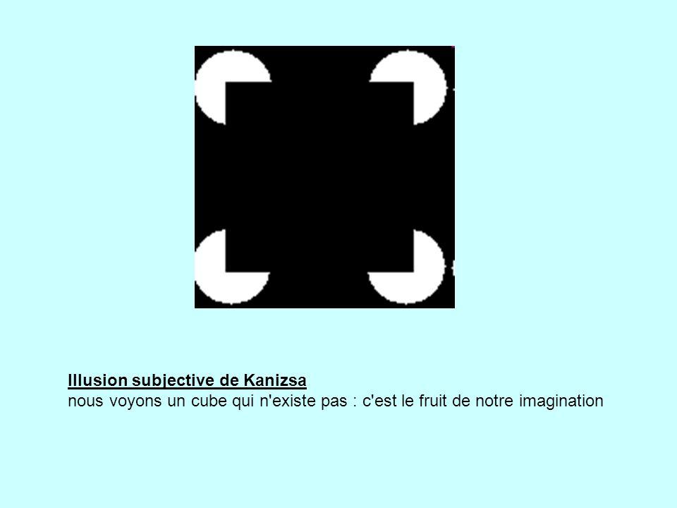 Illusion subjective de Kanizsa nous voyons un cube qui n existe pas : c est le fruit de notre imagination