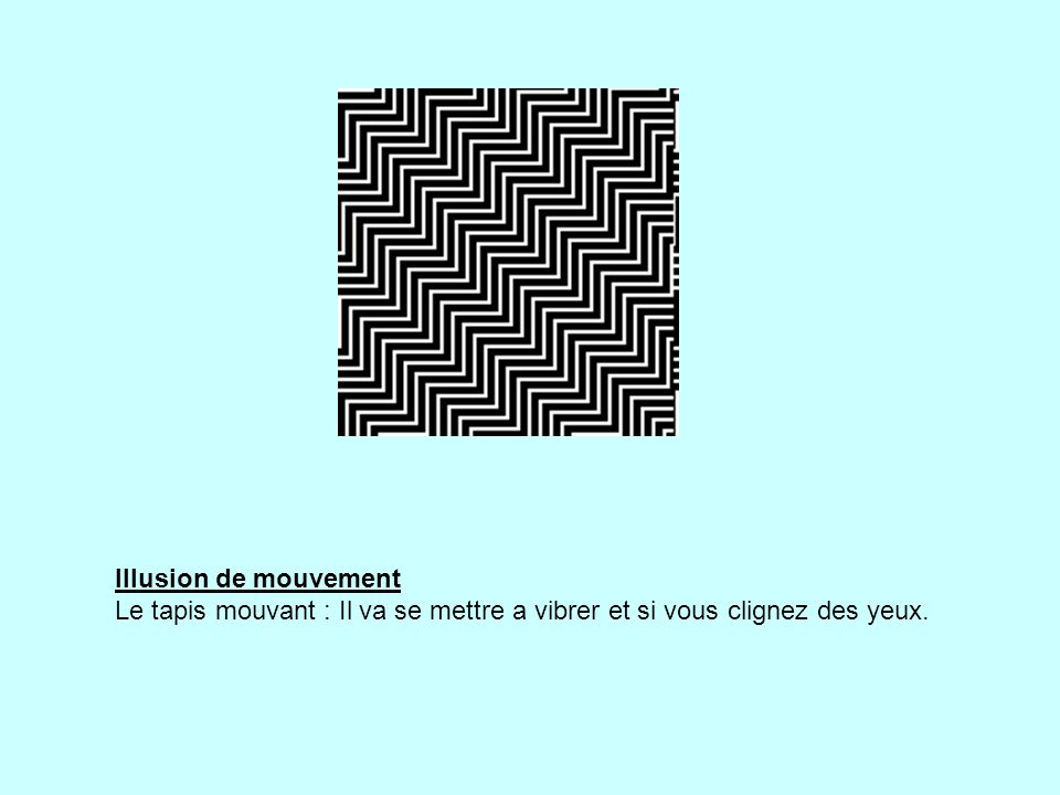 Illusion de mouvement Le tapis mouvant : Il va se mettre a vibrer et si vous clignez des yeux.