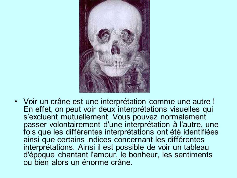 Voir un crâne est une interprétation comme une autre