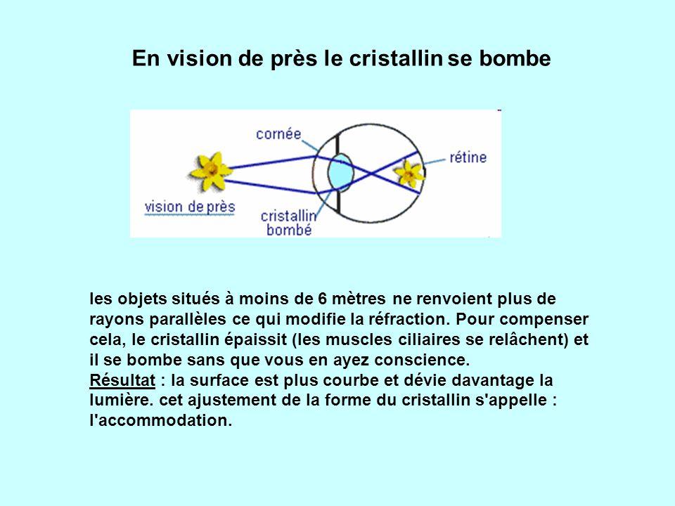 En vision de près le cristallin se bombe
