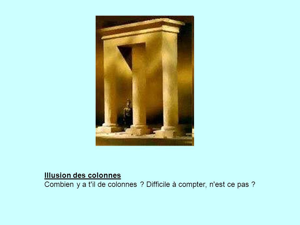 Illusion des colonnes Combien y a t il de colonnes