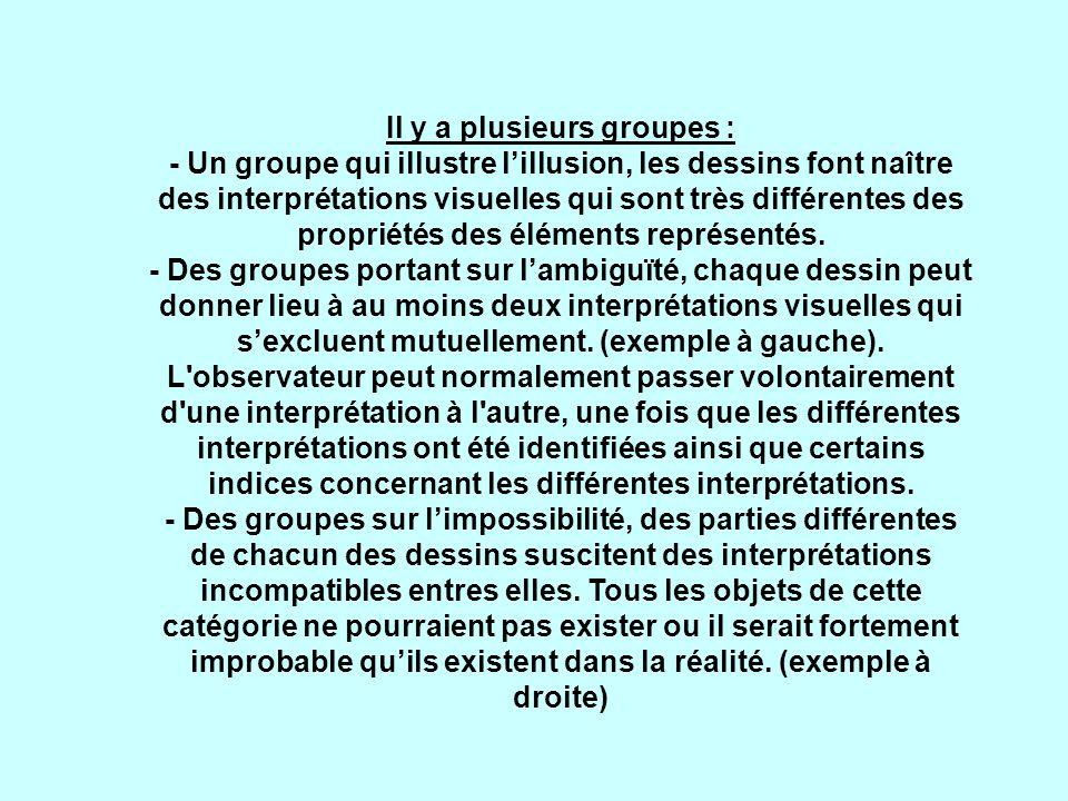 Il y a plusieurs groupes : - Un groupe qui illustre l'illusion, les dessins font naître des interprétations visuelles qui sont très différentes des propriétés des éléments représentés.