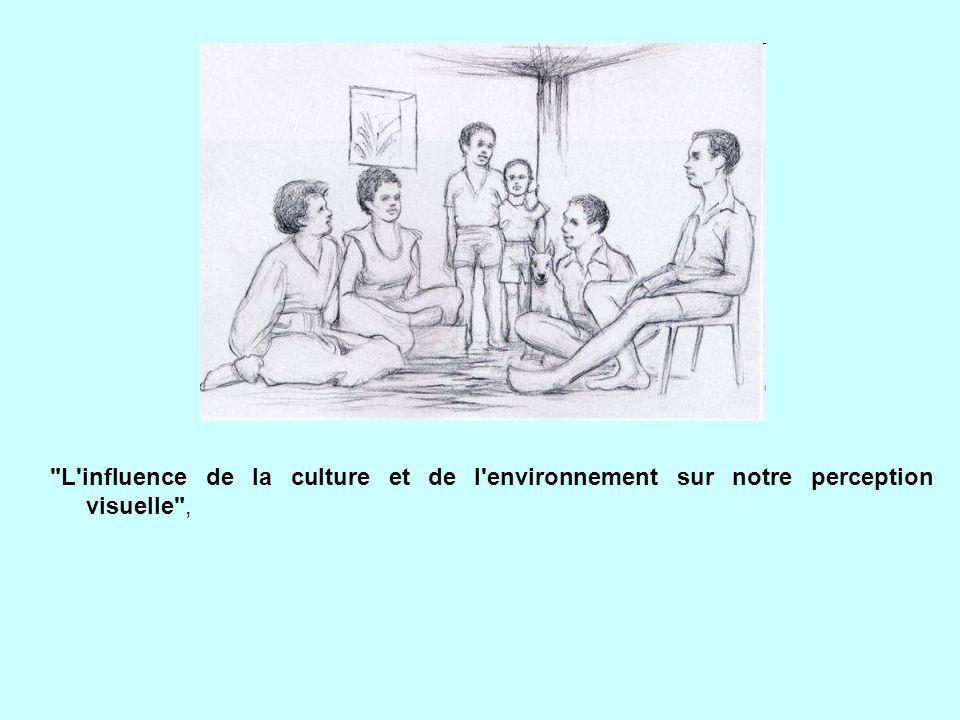 L influence de la culture et de l environnement sur notre perception visuelle ,