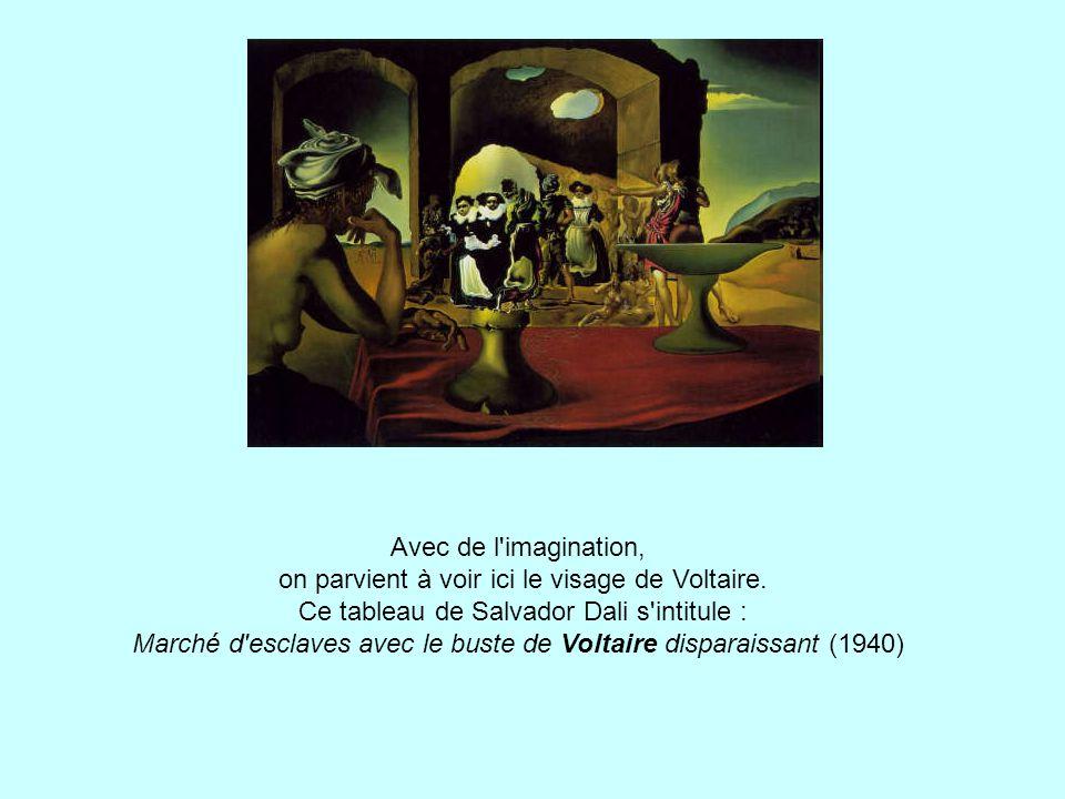 Avec de l imagination, on parvient à voir ici le visage de Voltaire
