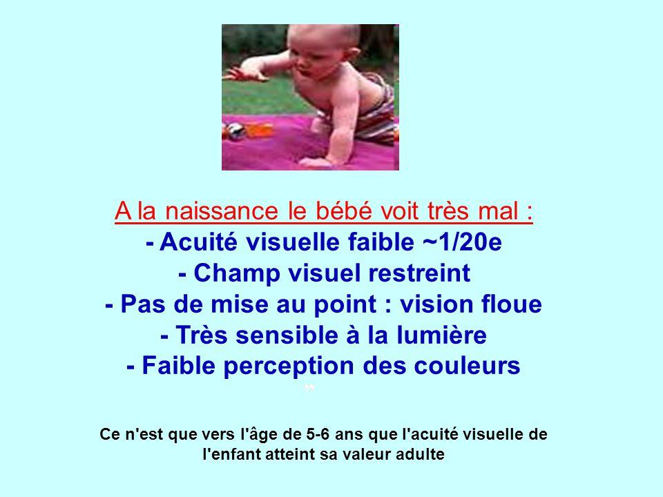 A la naissance le bébé voit très mal : - Acuité visuelle faible ~1/20e - Champ visuel restreint - Pas de mise au point : vision floue - Très sensible à la lumière - Faible perception des couleurs