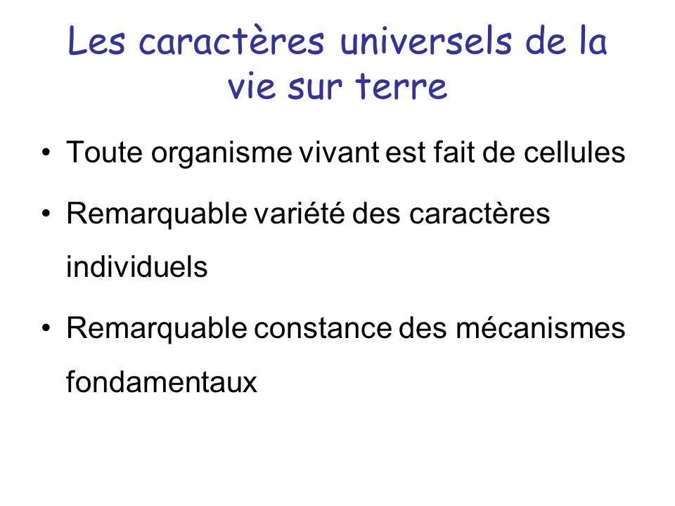 Les caractères universels de la vie sur terre
