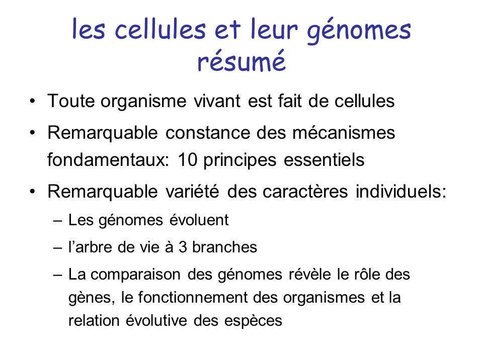 les cellules et leur génomes résumé