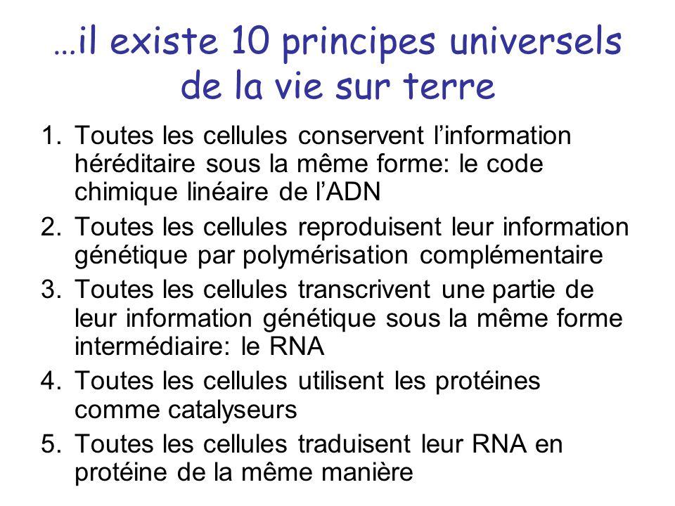 …il existe 10 principes universels de la vie sur terre