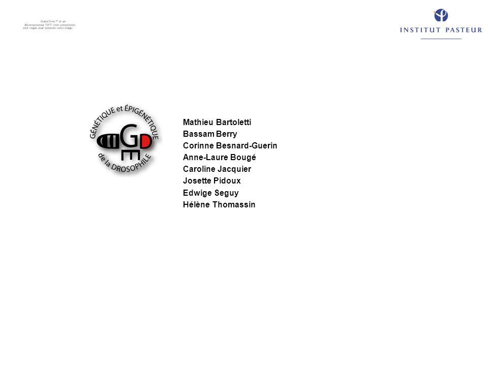 Mathieu Bartoletti Bassam Berry. Corinne Besnard-Guerin. Anne-Laure Bougé. Caroline Jacquier. Josette Pidoux.