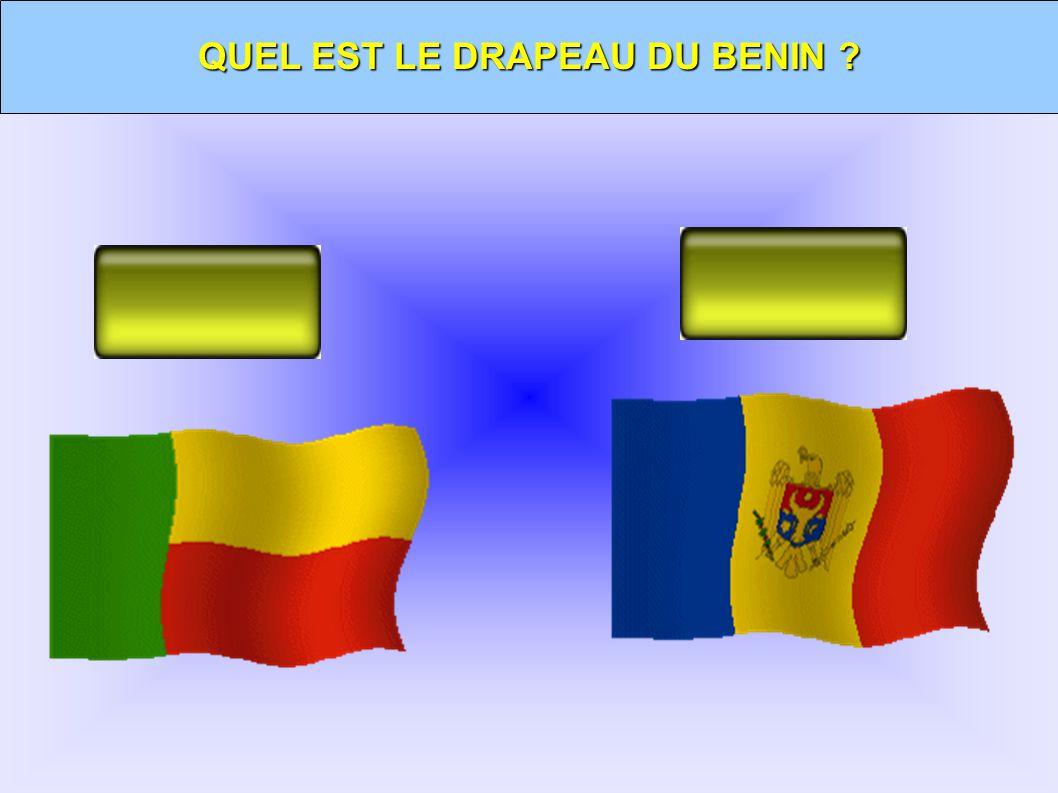 QUEL EST LE DRAPEAU DU BENIN