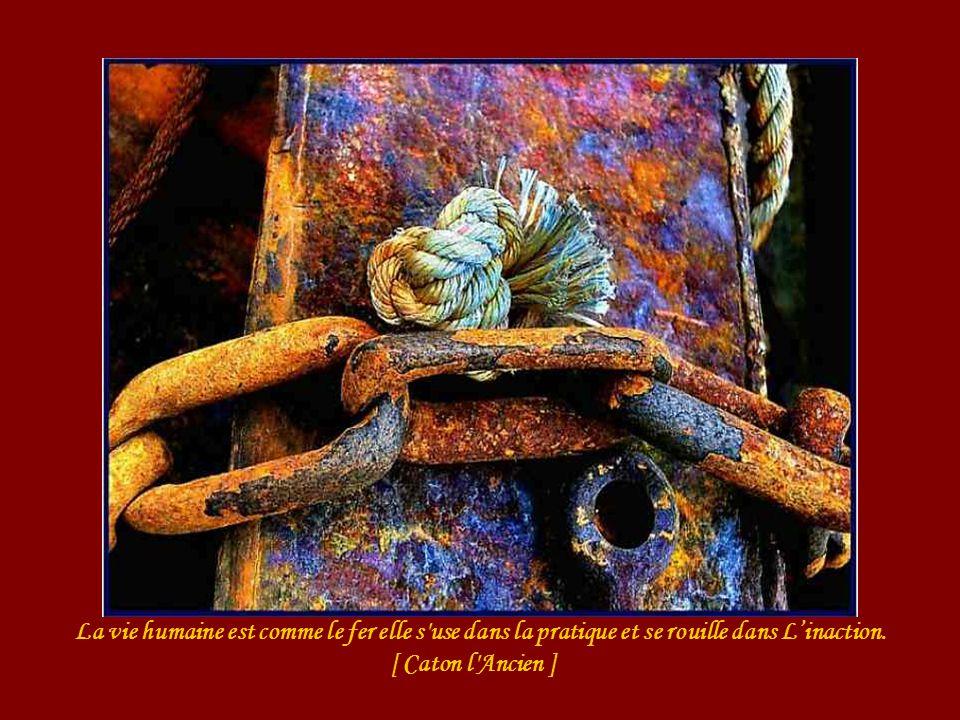 La vie humaine est comme le fer elle s use dans la pratique et se rouille dans L'inaction.