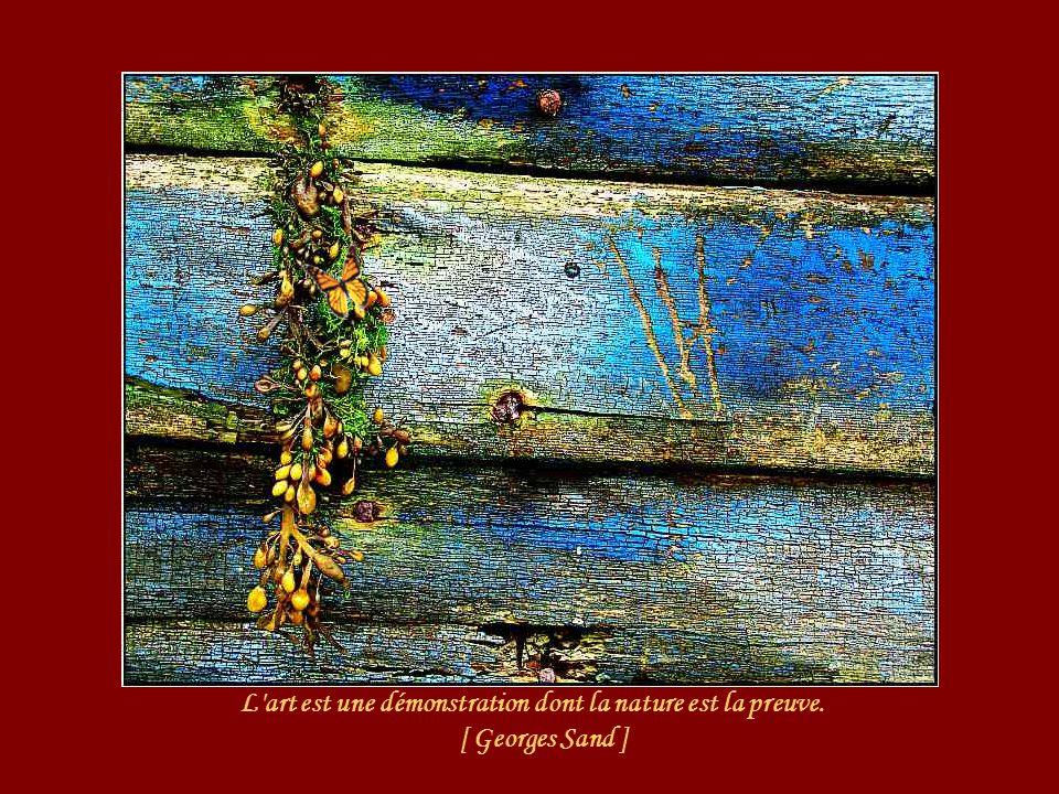 L art est une démonstration dont la nature est la preuve