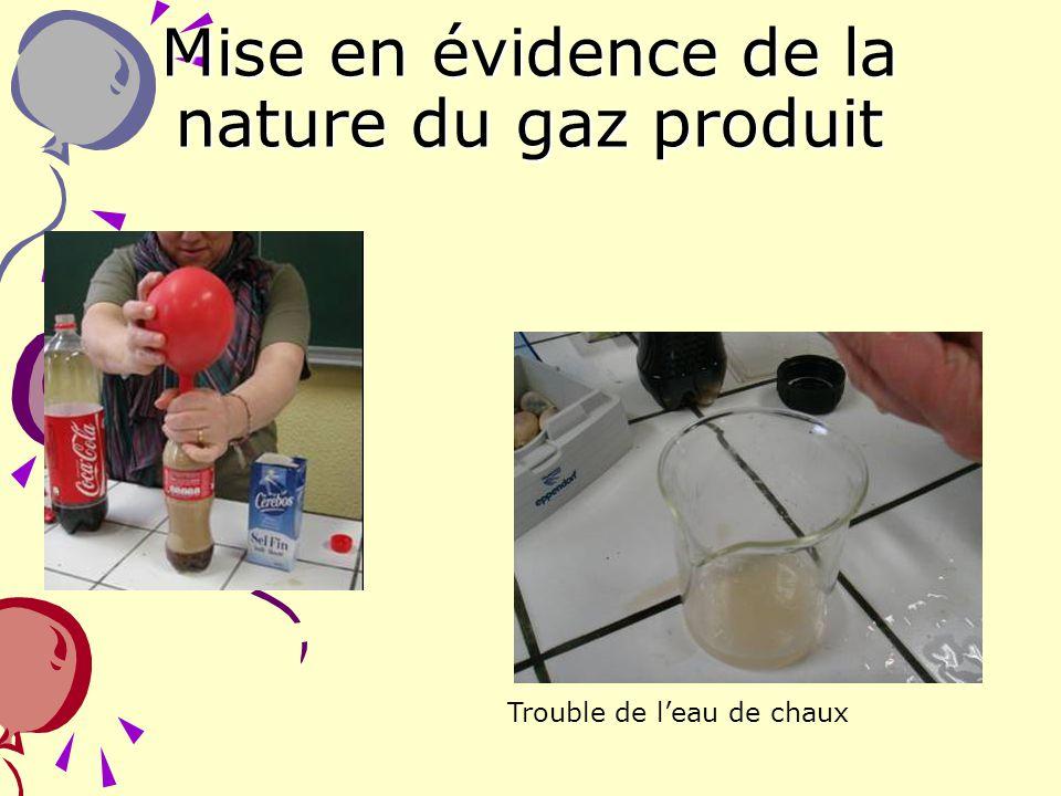 Mise en évidence de la nature du gaz produit