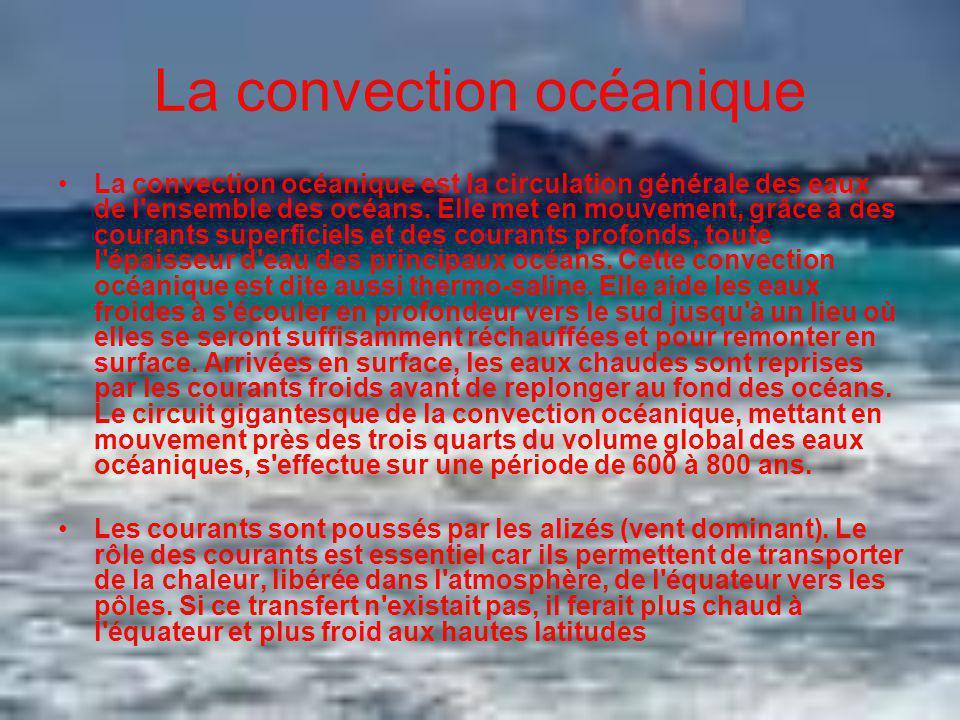 La convection océanique