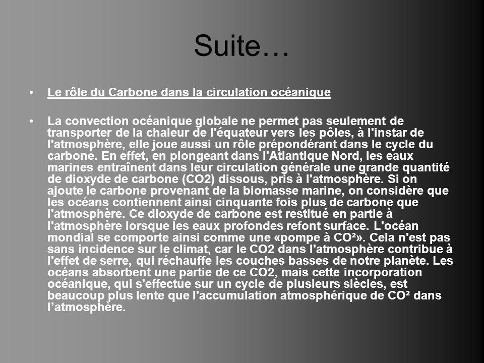 Suite… Le rôle du Carbone dans la circulation océanique