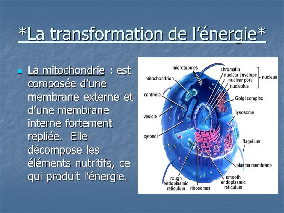 *La transformation de l'énergie*