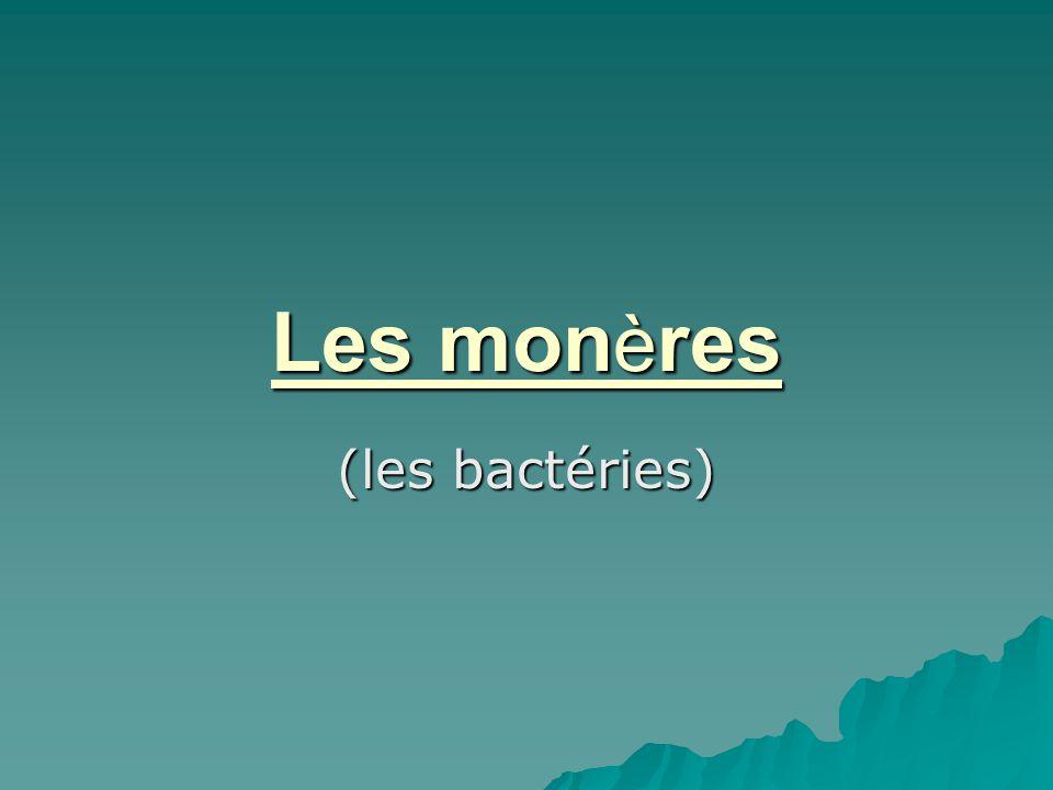 Les monères (les bactéries)