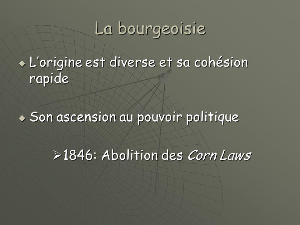La bourgeoisie L'origine est diverse et sa cohésion rapide