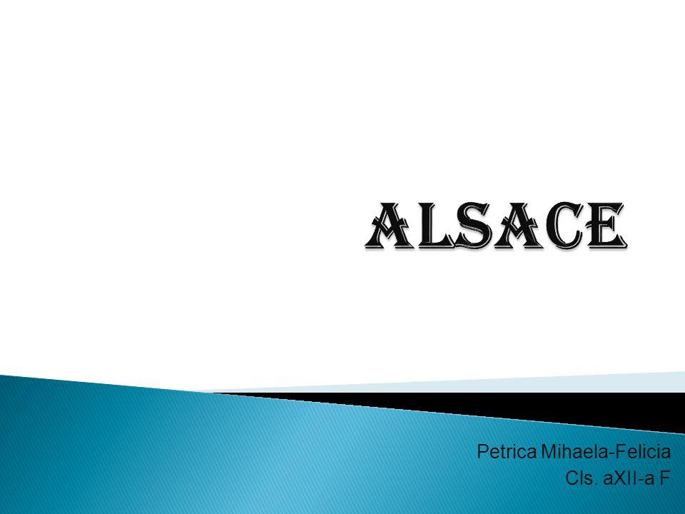 Petrica Mihaela-Felicia Cls. aXII-a F