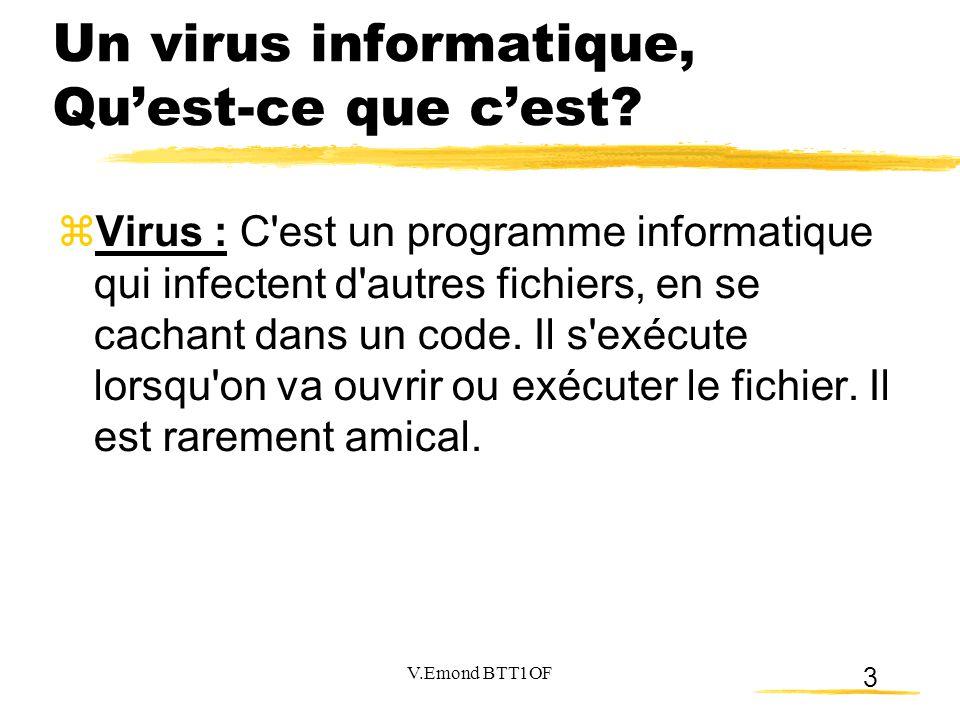 Un virus informatique, Qu'est-ce que c'est