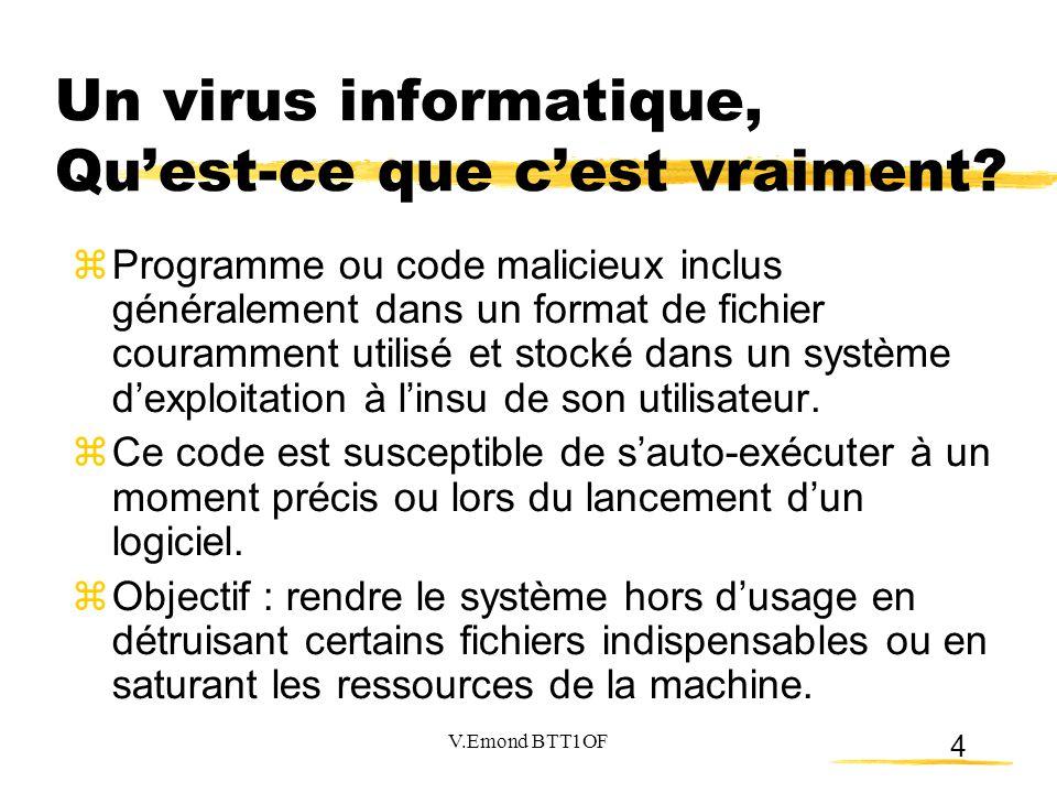 Un virus informatique, Qu'est-ce que c'est vraiment