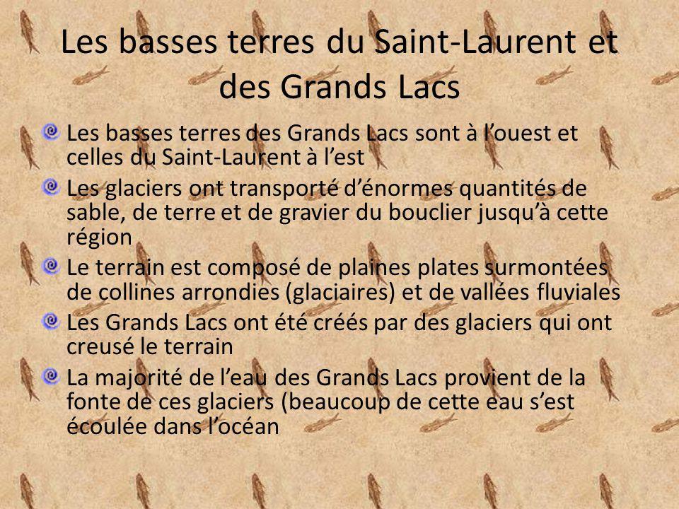Les basses terres du Saint-Laurent et des Grands Lacs