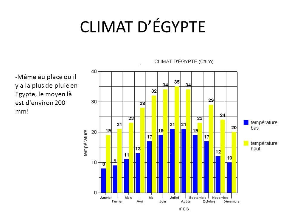 CLIMAT D'ÉGYPTE -Même au place ou il y a la plus de pluie en Égypte, le moyen là est d environ 200 mm!