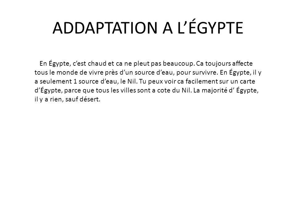 ADDAPTATION A L'ÉGYPTE
