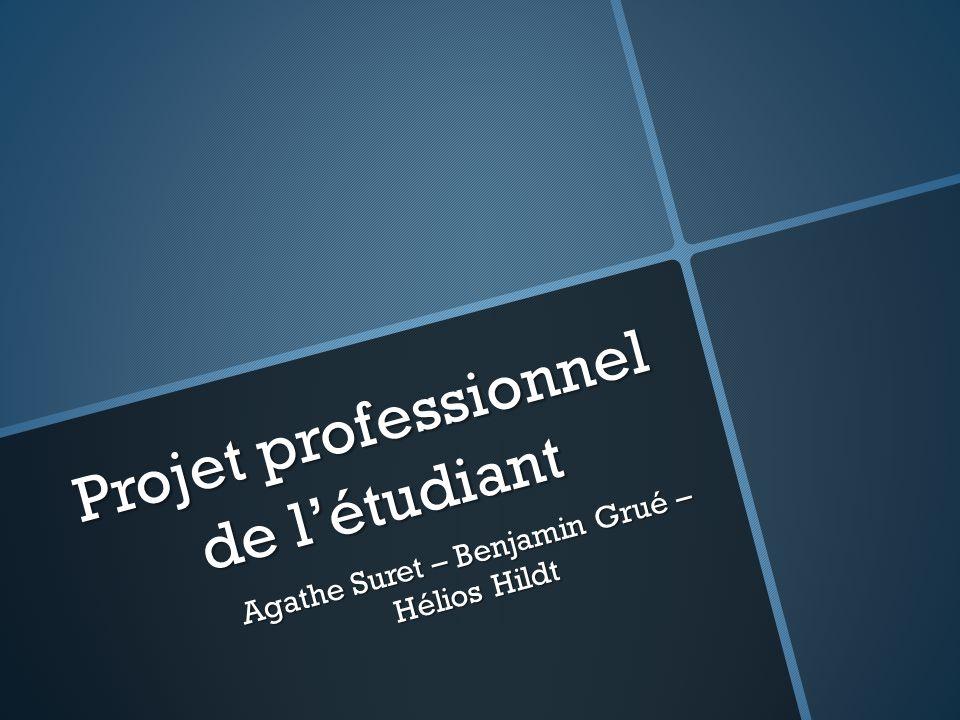 Projet professionnel de l'étudiant