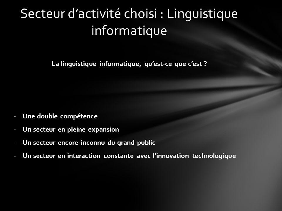 Secteur d'activité choisi : Linguistique informatique