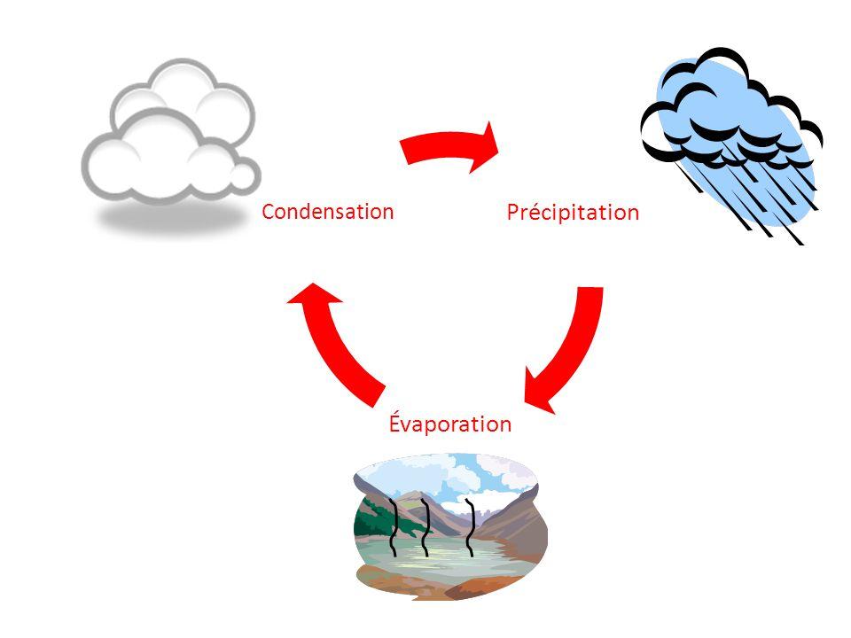 Précipitation Évaporation Condensation