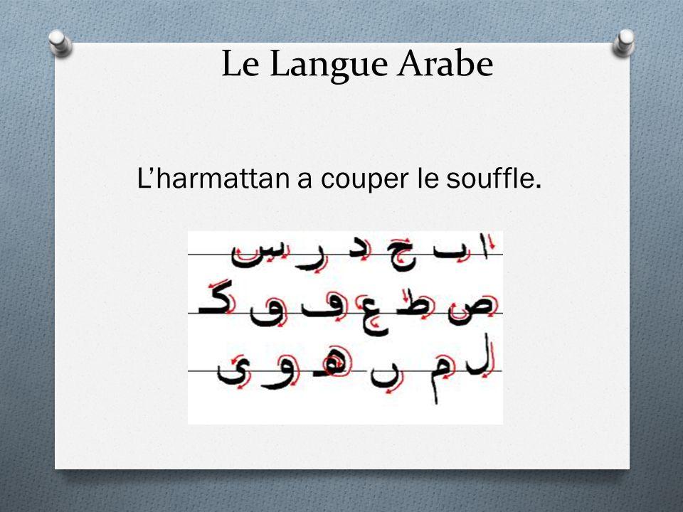 Le Langue Arabe L'harmattan a couper le souffle.
