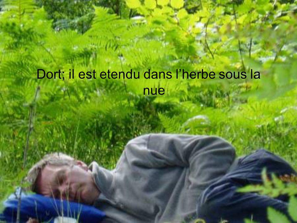 Dort; il est etendu dans l'herbe sous la nue