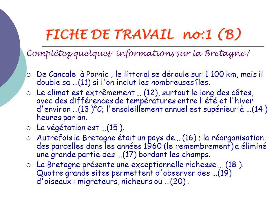 FICHE DE TRAVAIL no:1 (B)