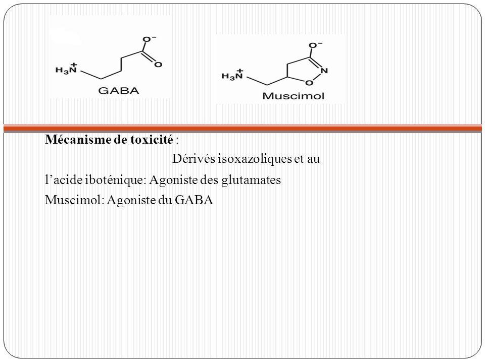 Dérivés isoxazoliques et au